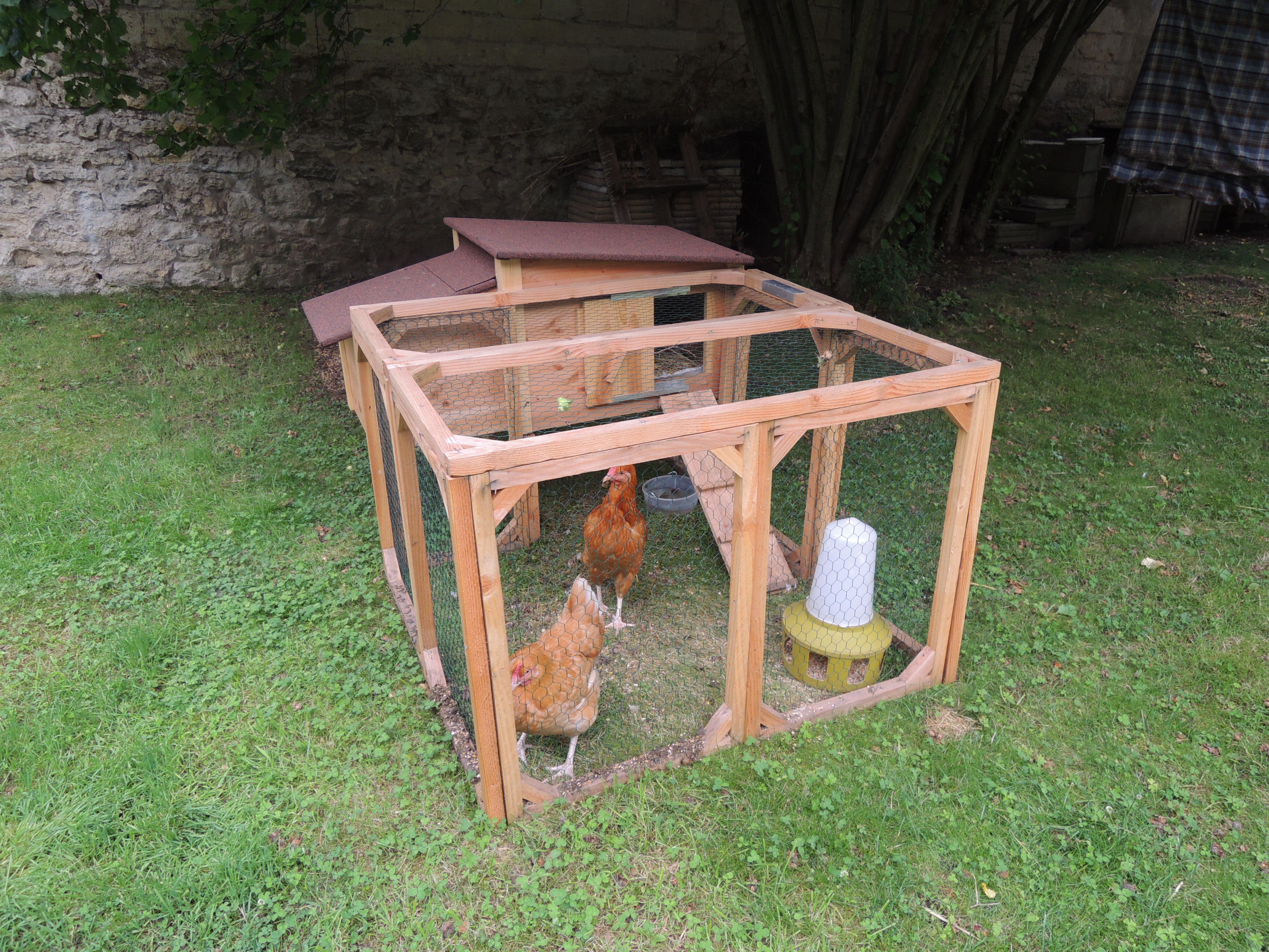 AEFEL installe deux poules dans son poulailler